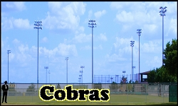 5' x 20' Cobras Letters - 3 Colors